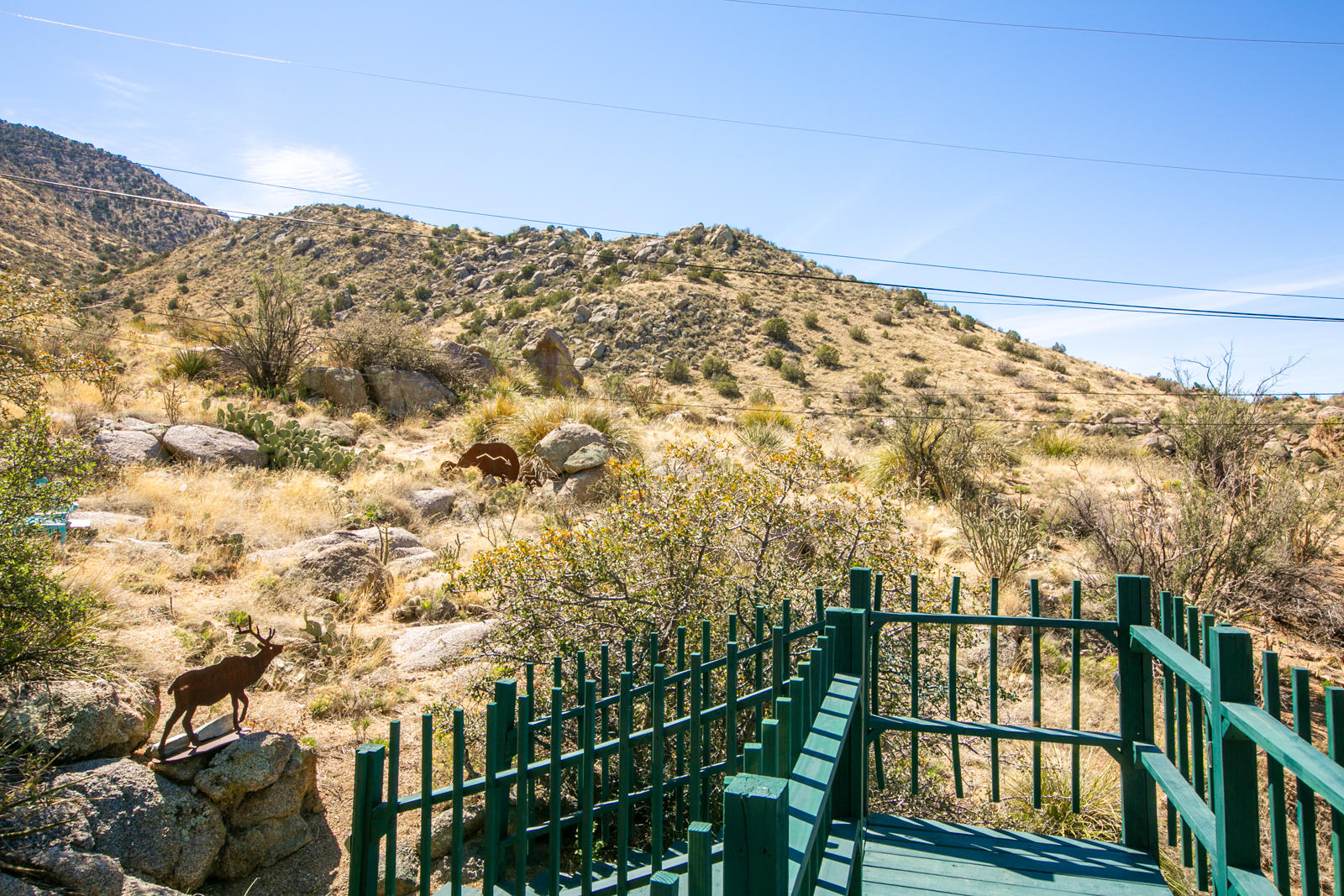 13516 Deer Trail Place NE Property Photo - Albuquerque, NM real estate listing