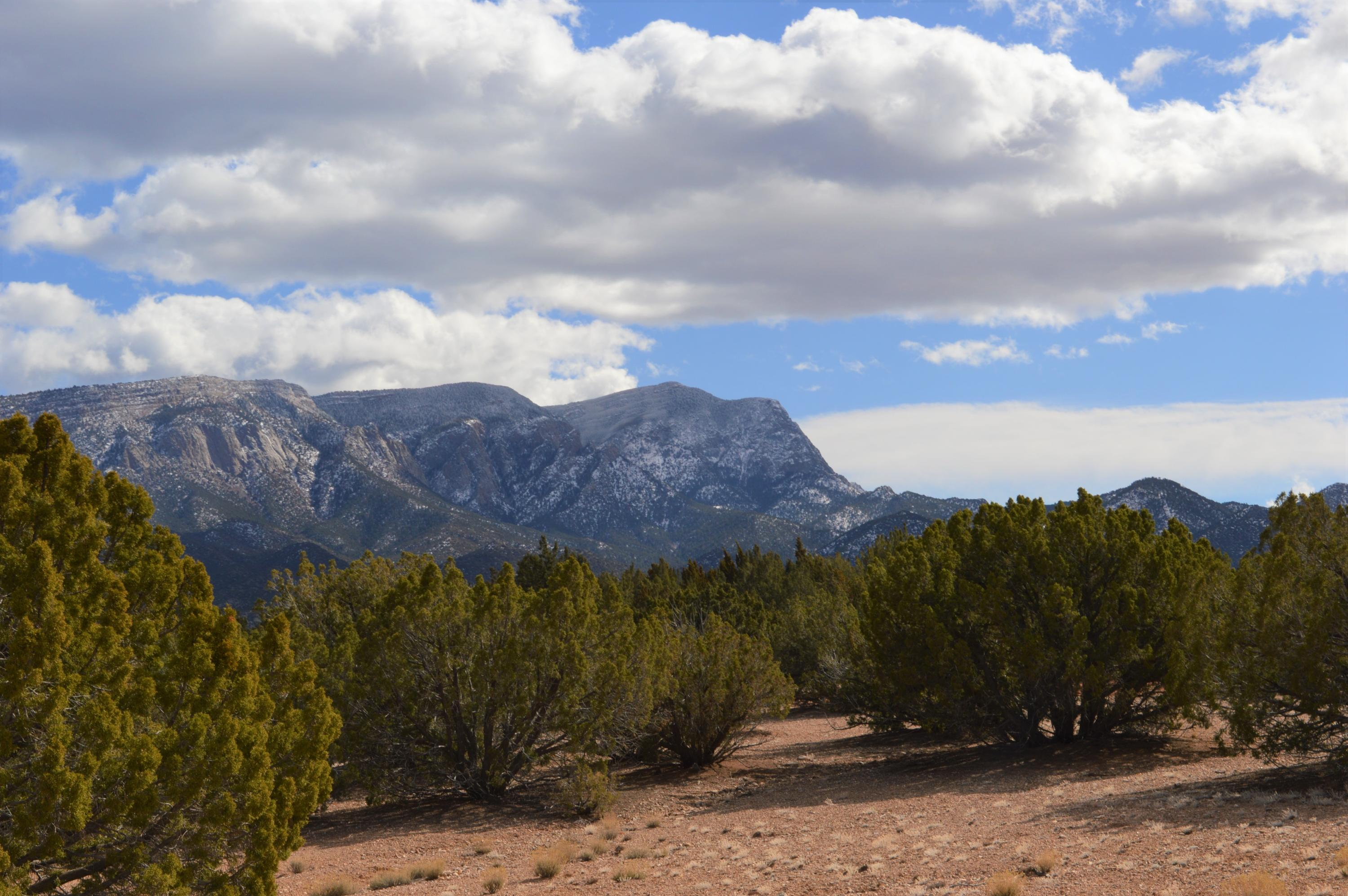 74 ANASAZI TRAILS Road Property Photo - Placitas, NM real estate listing
