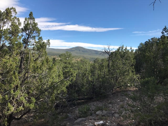 Turquoise Trail (Lot 14) Property Photo - Tijeras, NM real estate listing