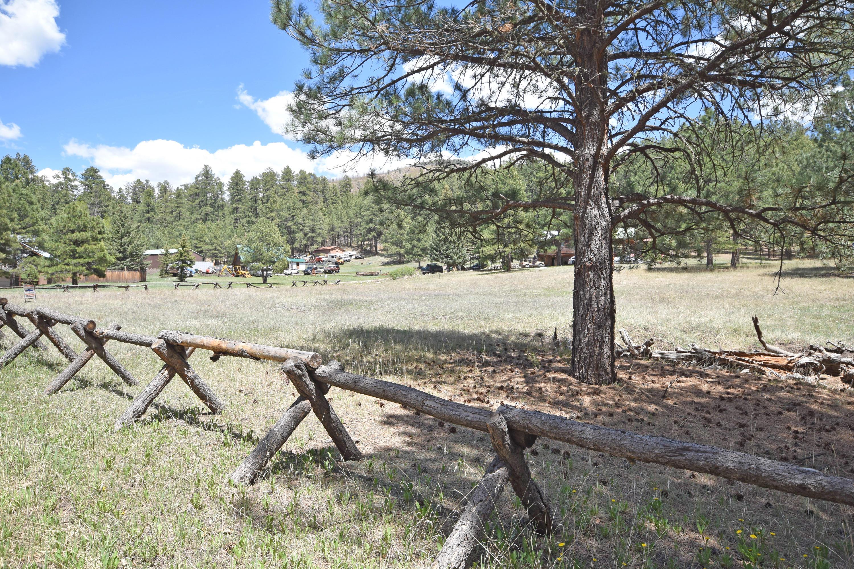 Elk Trail Property Photo