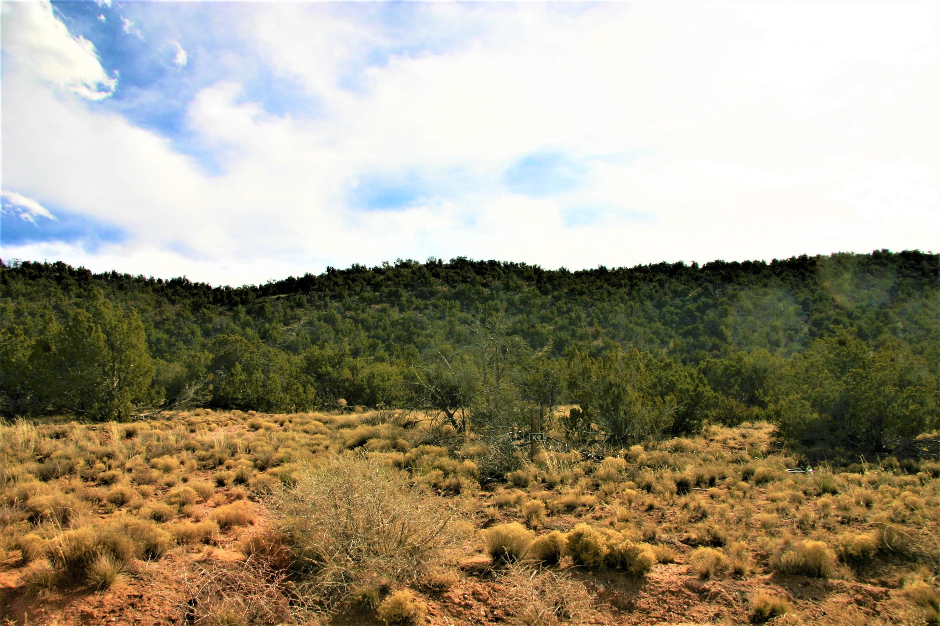 3049 Jumano Trail Lot 33 Property Photo - Mountainair, NM real estate listing