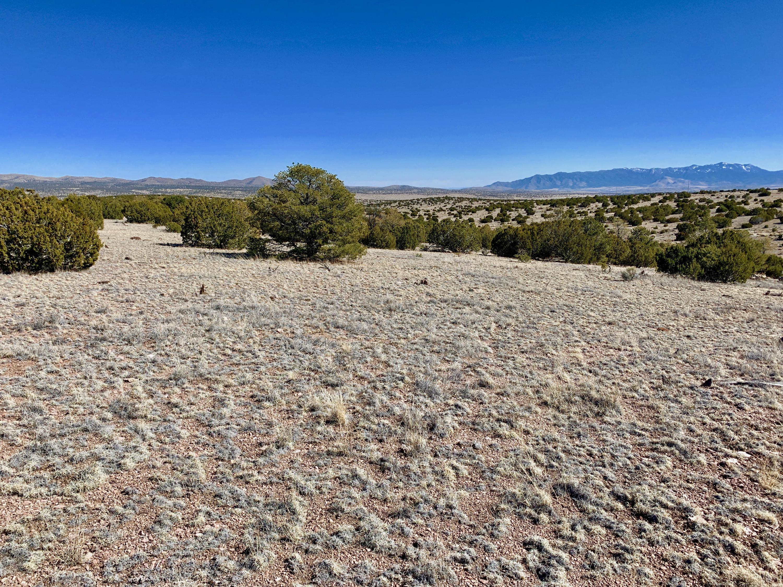 168 Pinon Springs Ranches Property Photo - Magdalena, NM real estate listing