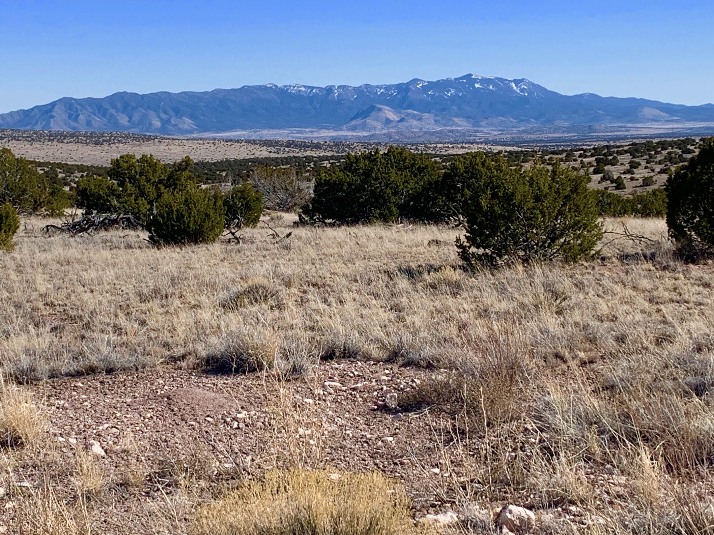 174 PINON SPRINGS RANCH Property Photo - Magdalena, NM real estate listing