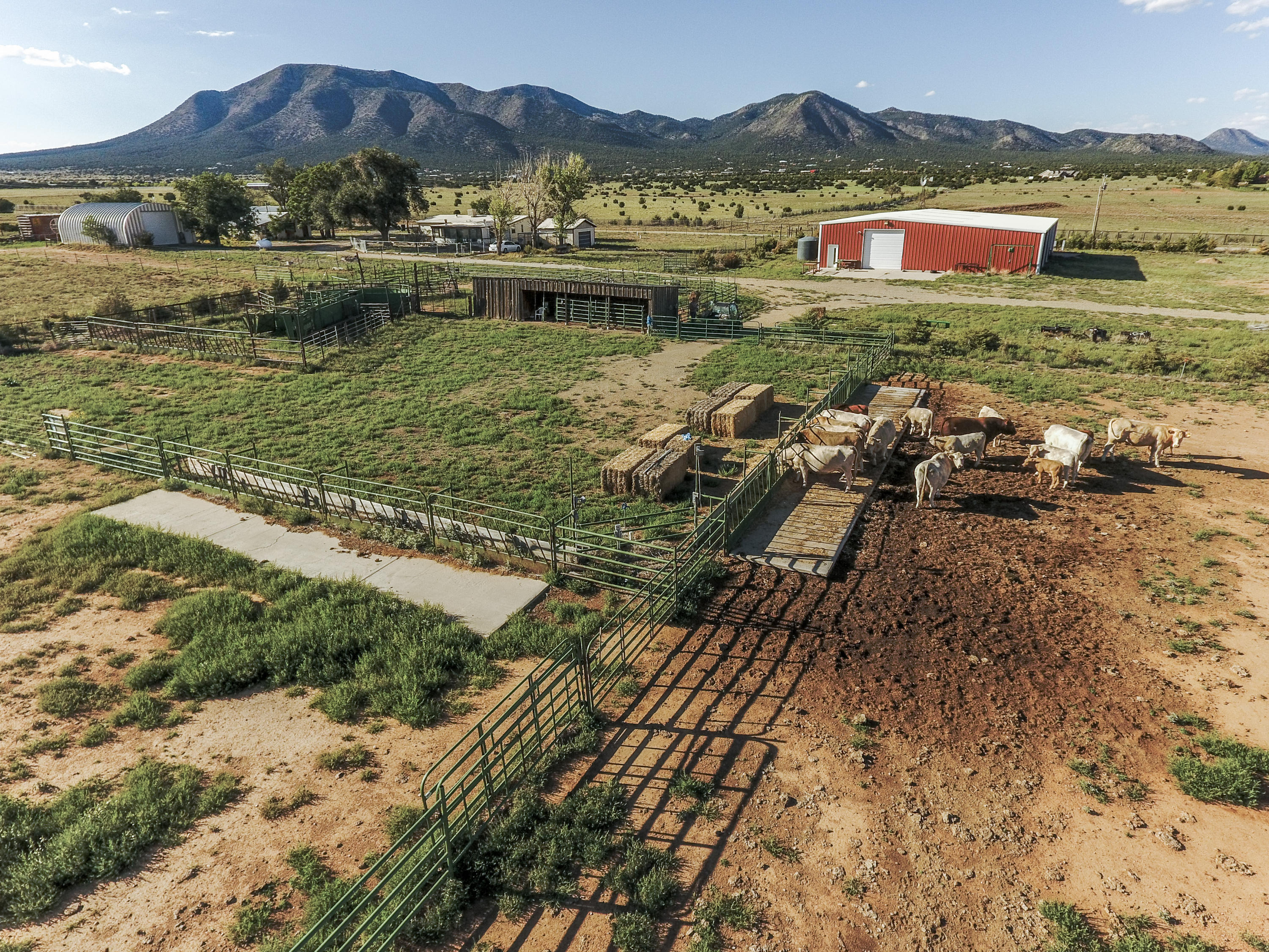 62 Moonbeam Ranch Road Property Photo - Edgewood, NM real estate listing