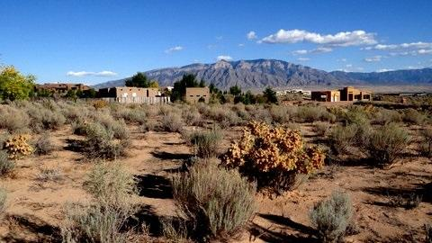 Lot 9 Don Julio Road Property Photo - Corrales, NM real estate listing