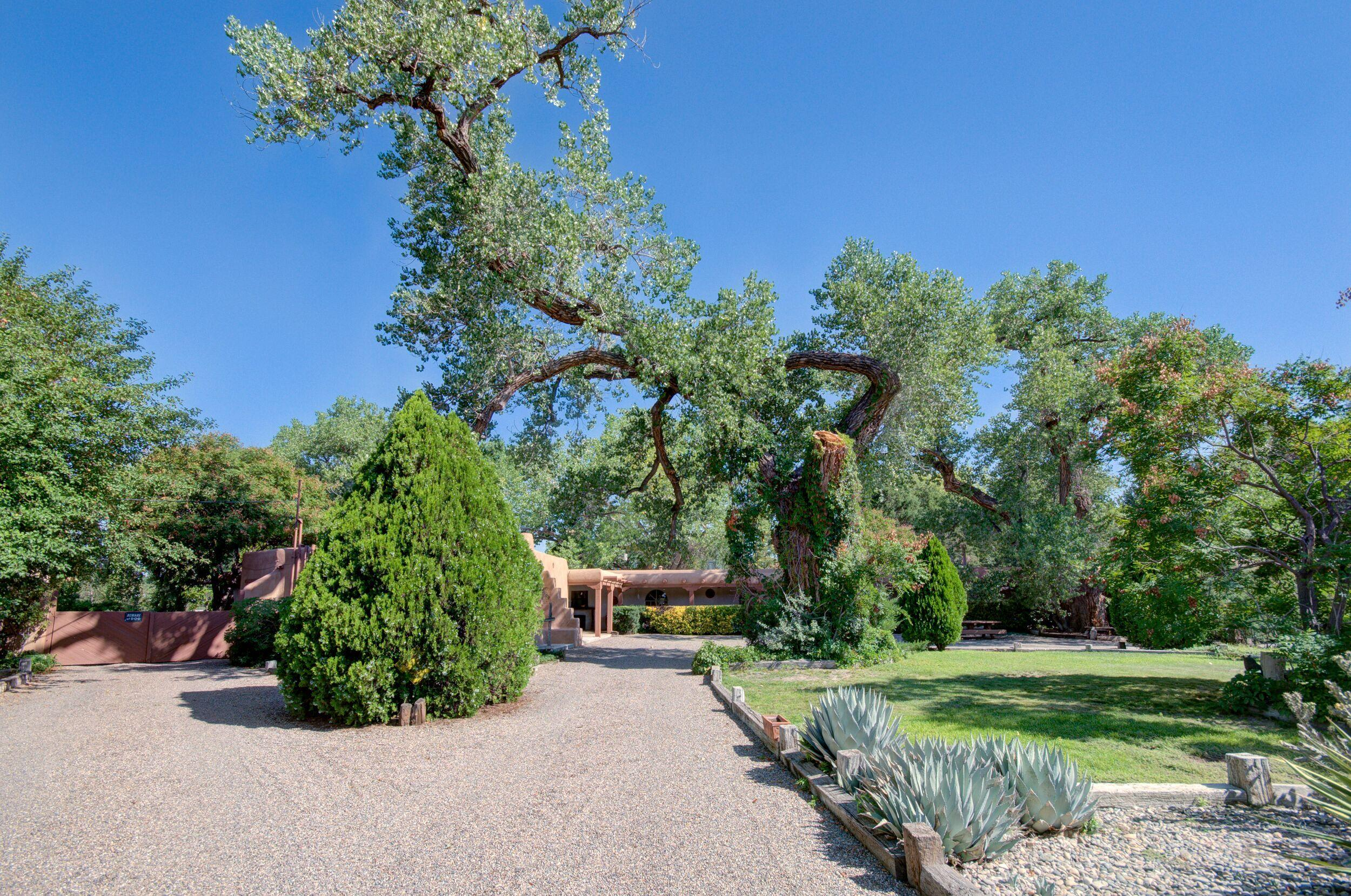 509 LOS RANCHOS Road NW, Los Ranchos, NM 87107 - Los Ranchos, NM real estate listing