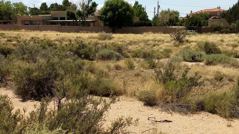 2 DEL REY Avenue NE Property Photo - Albuquerque, NM real estate listing