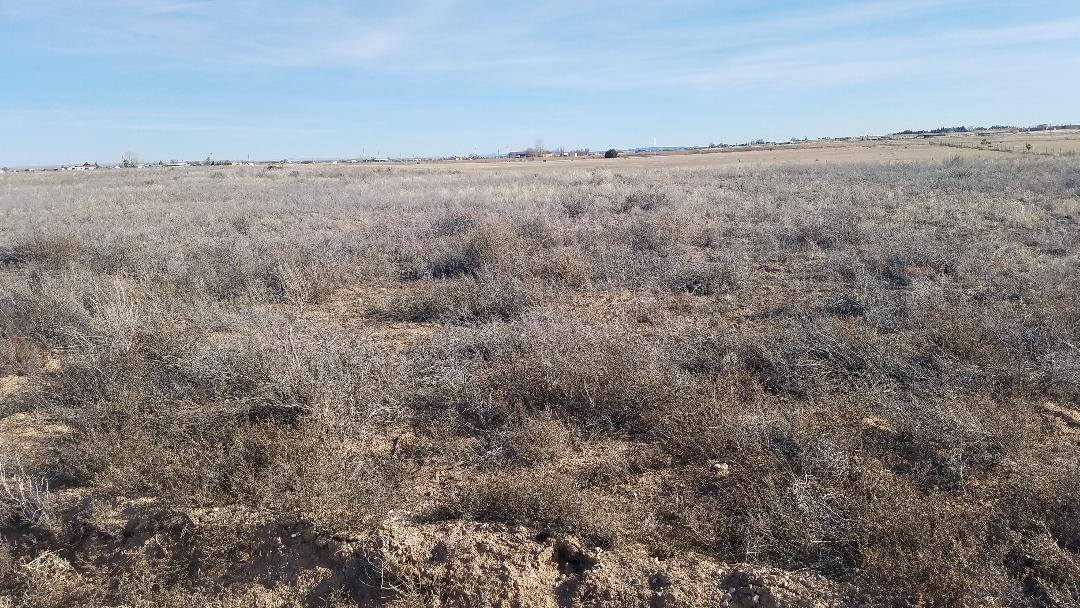 Ellis Property Photo - McIntosh, NM real estate listing