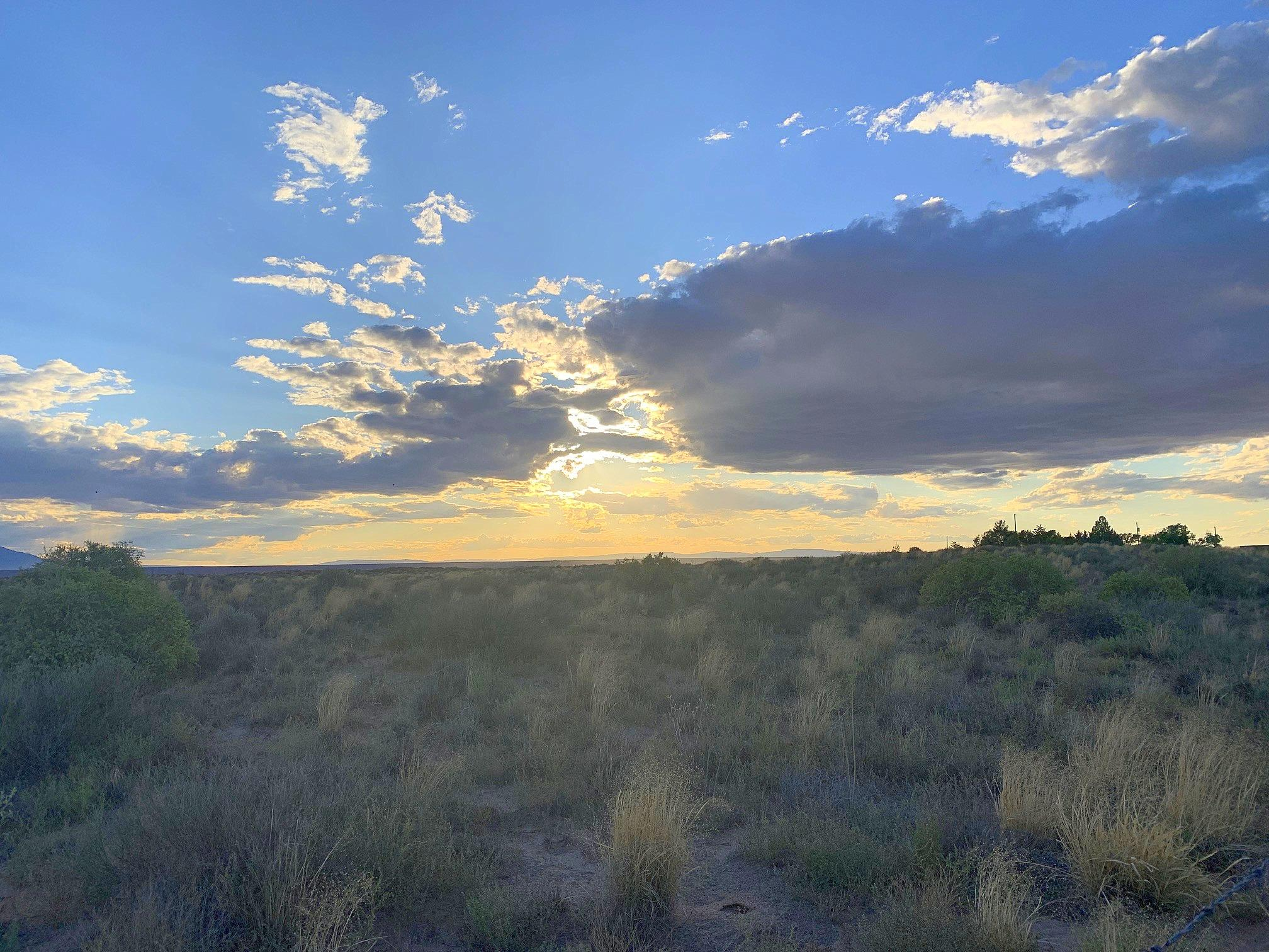 Lot 14 Highway 47 Property Photo - Rio Communities, NM real estate listing