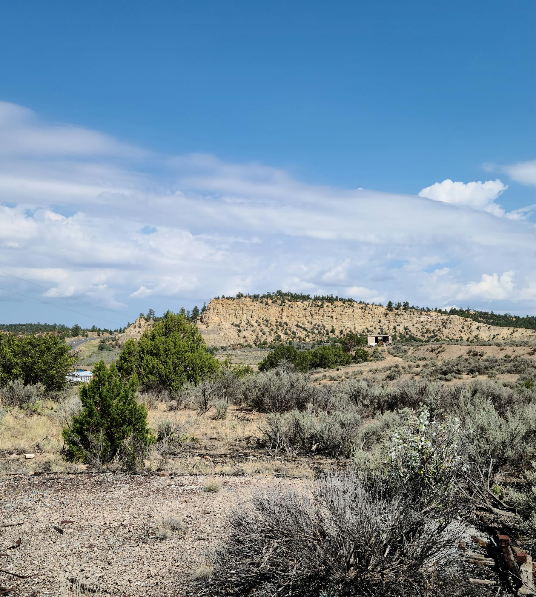 TBD Hwy 550 Property Photo - Cuba, NM real estate listing