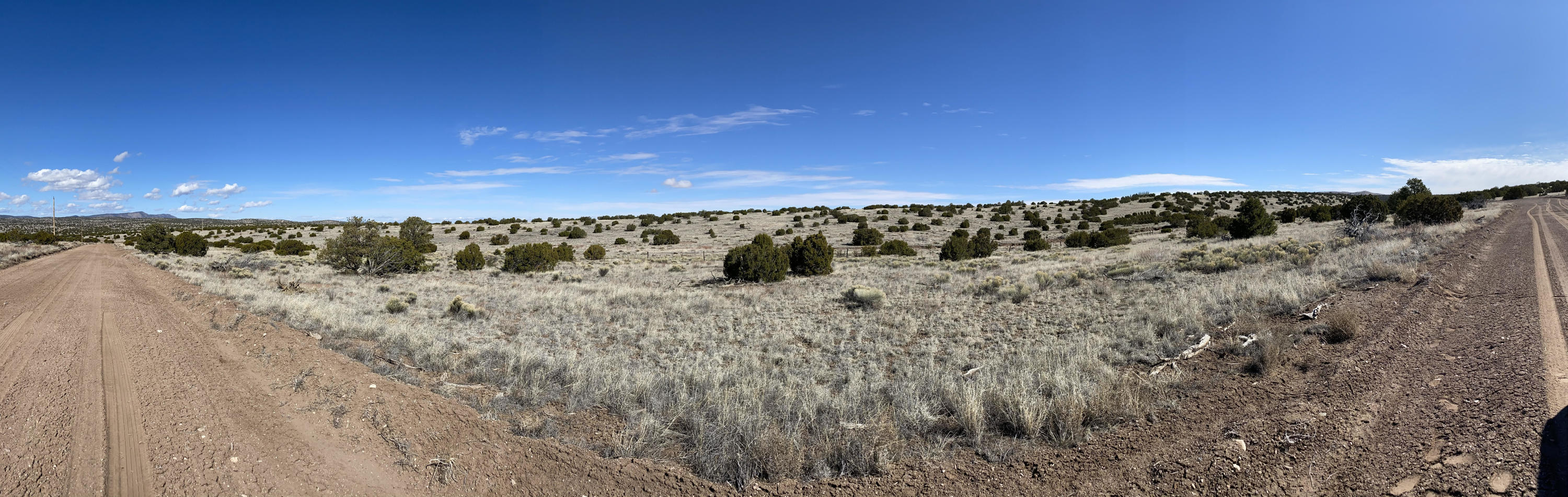 Lot 43 Pinon Springs Property Photo - Magdalena, NM real estate listing