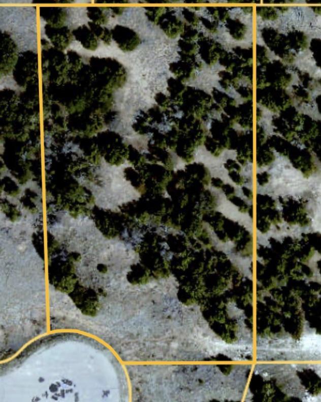 Coyote Crossing Real Estate Listings Main Image