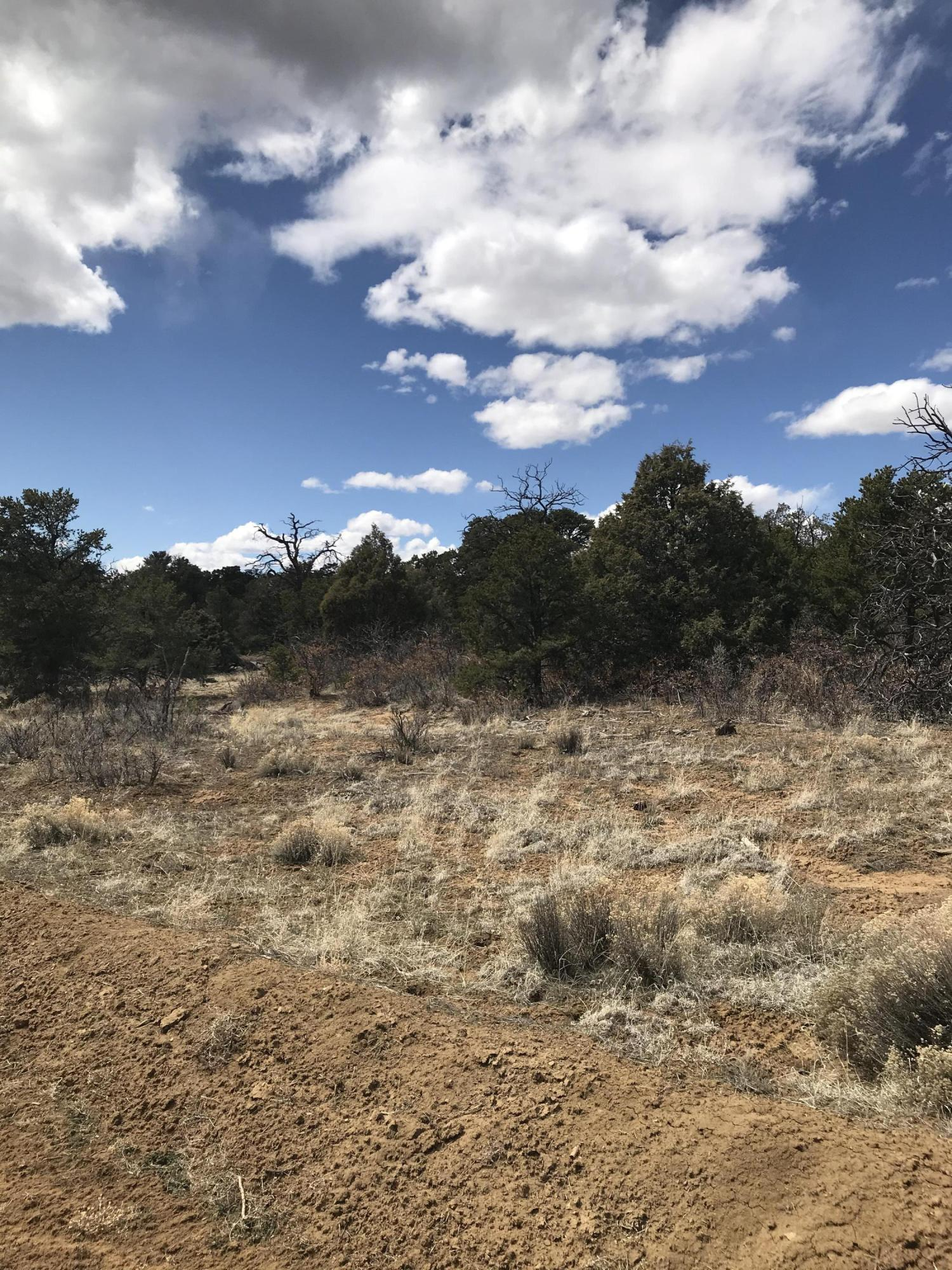 Cattlemans Court Property Photo - Pie Town, NM real estate listing