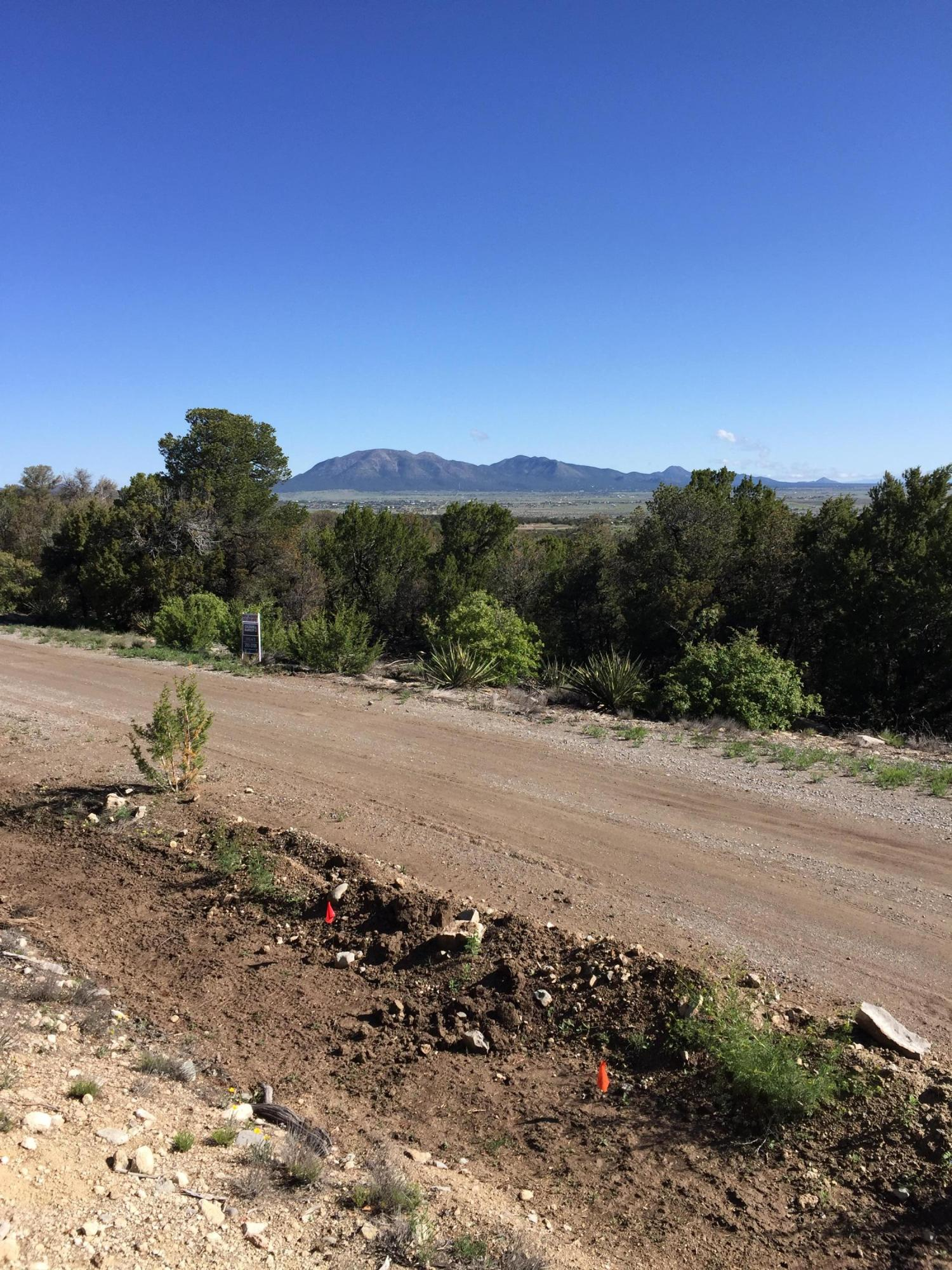 13 Las Nietas Ct Property Photo - Edgewood, NM real estate listing
