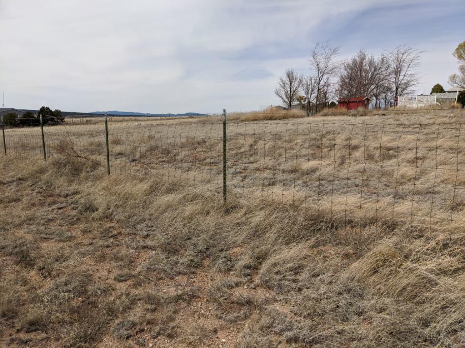 Lands Of Morrow Real Estate Listings Main Image