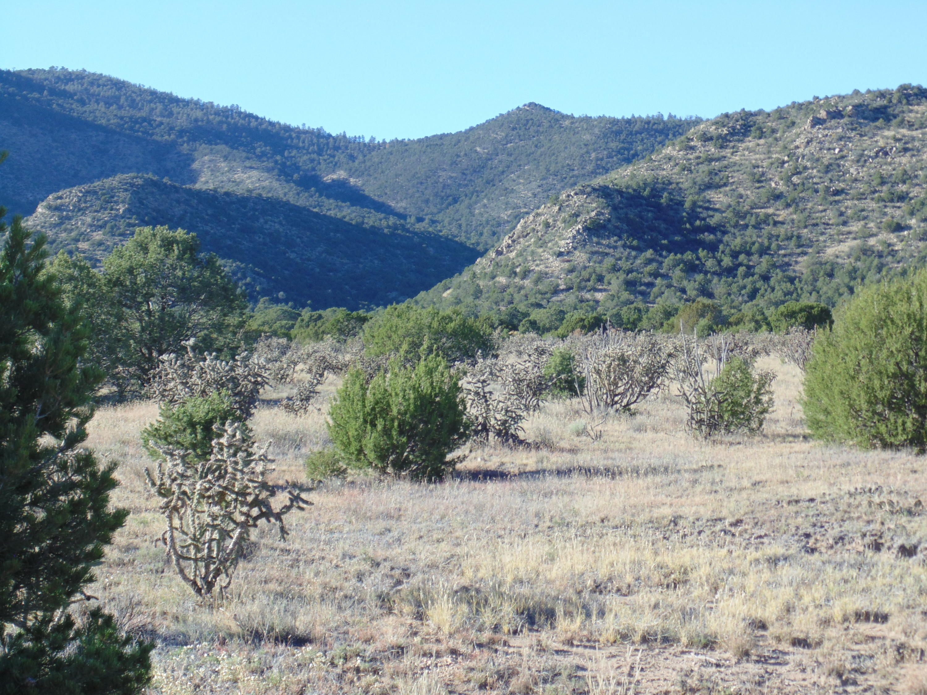 0 Sandoval Road Property Photo - Edgewood, NM real estate listing