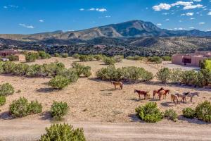 Sarita Marie Property Photo - Placitas, NM real estate listing