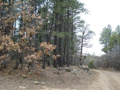 1 LongBow Drive #1 Property Photo - Torreon, NM real estate listing