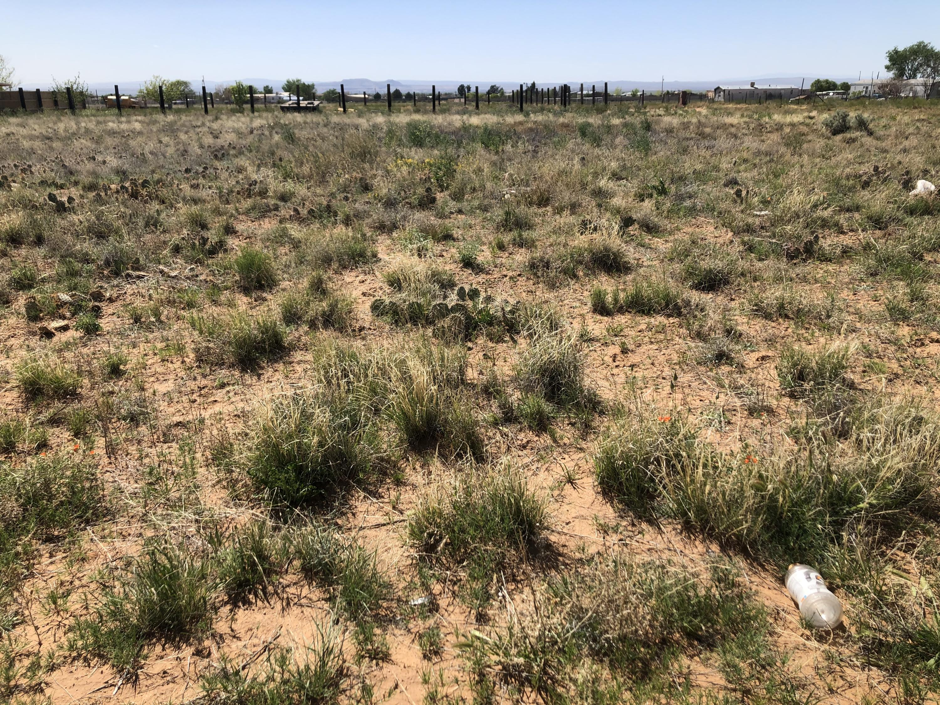 Tract 2 Mayo Loop Property Photo - Los Lunas, NM real estate listing