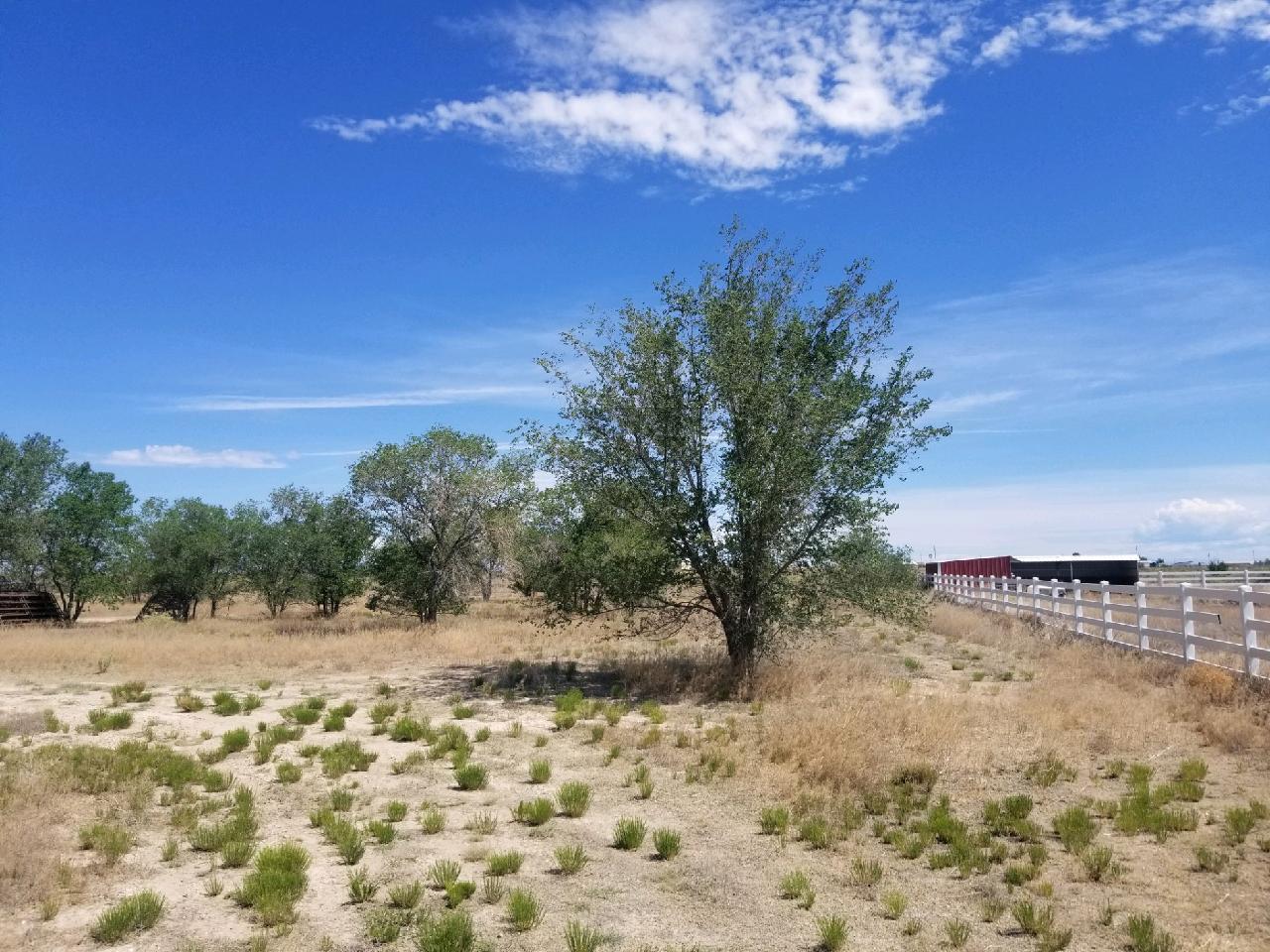 134 MI RANCHITO Road Property Photo - Moriarty, NM real estate listing