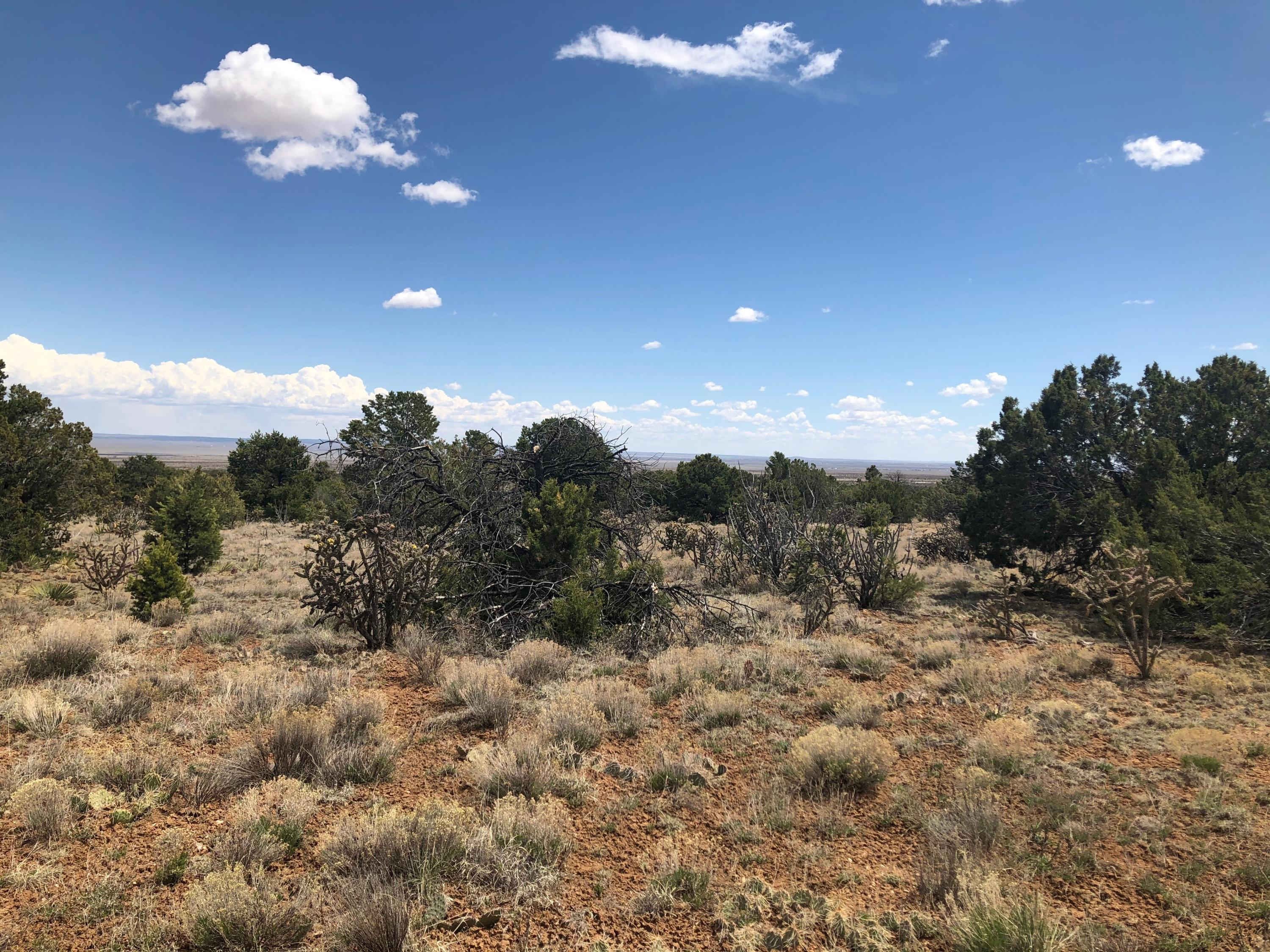 0 Stanley Property Photo - Stanley, NM real estate listing