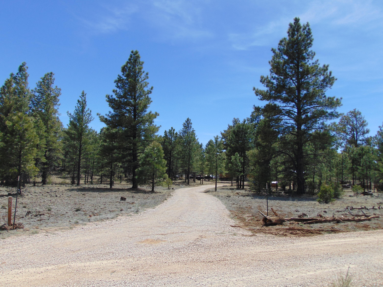 95 CALDERA Road Property Photo - Ramah, NM real estate listing