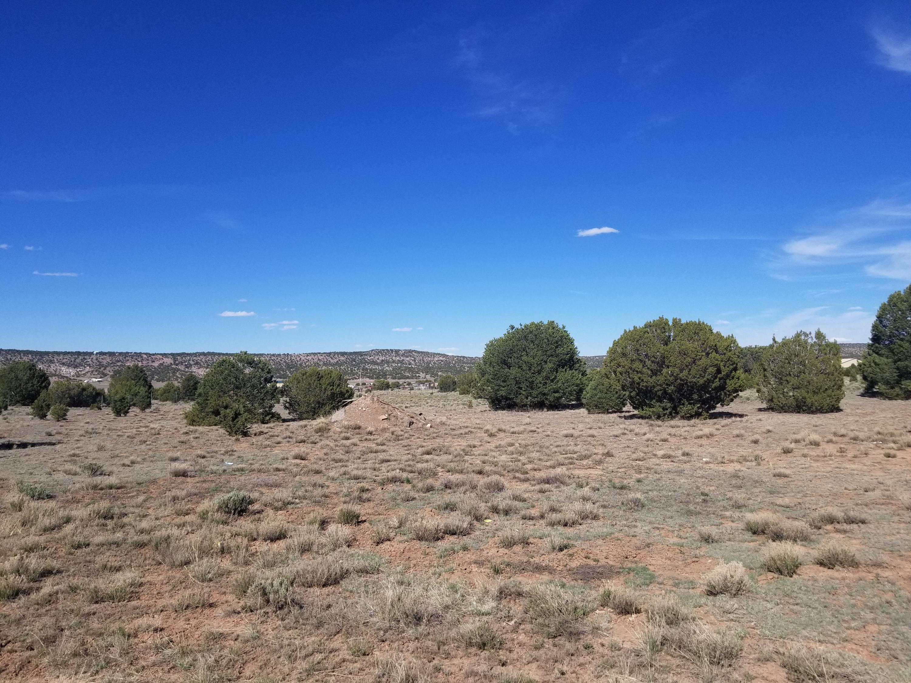 tbd Sewald Drive Property Photo - Thoreau, NM real estate listing