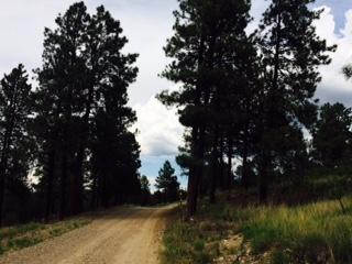 4 Fisher Court Property Photo - Tijeras, NM real estate listing