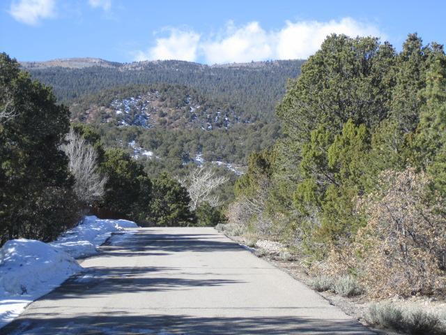 Beaver Lane (Lot 33) Property Photo - Cedar Crest, NM real estate listing