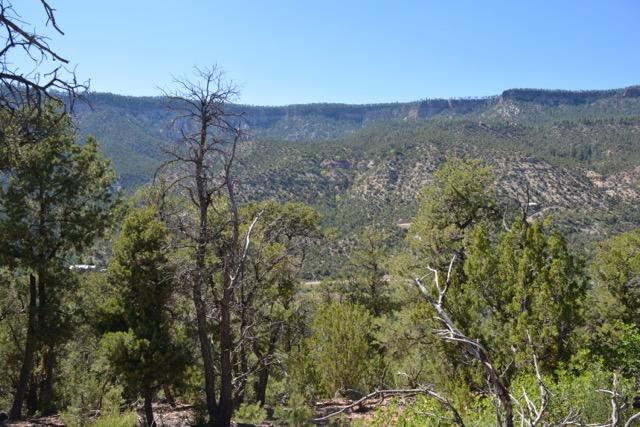 Lot B Indian Mesa Subdivision Property Photo - Jemez Springs, NM real estate listing