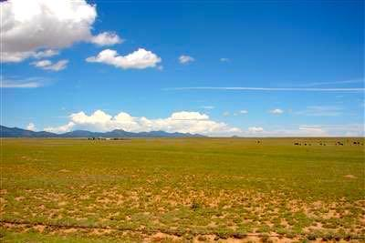 Jaymar Rd (Three 40 ac Tracts) Property Photo - Stanley, NM real estate listing