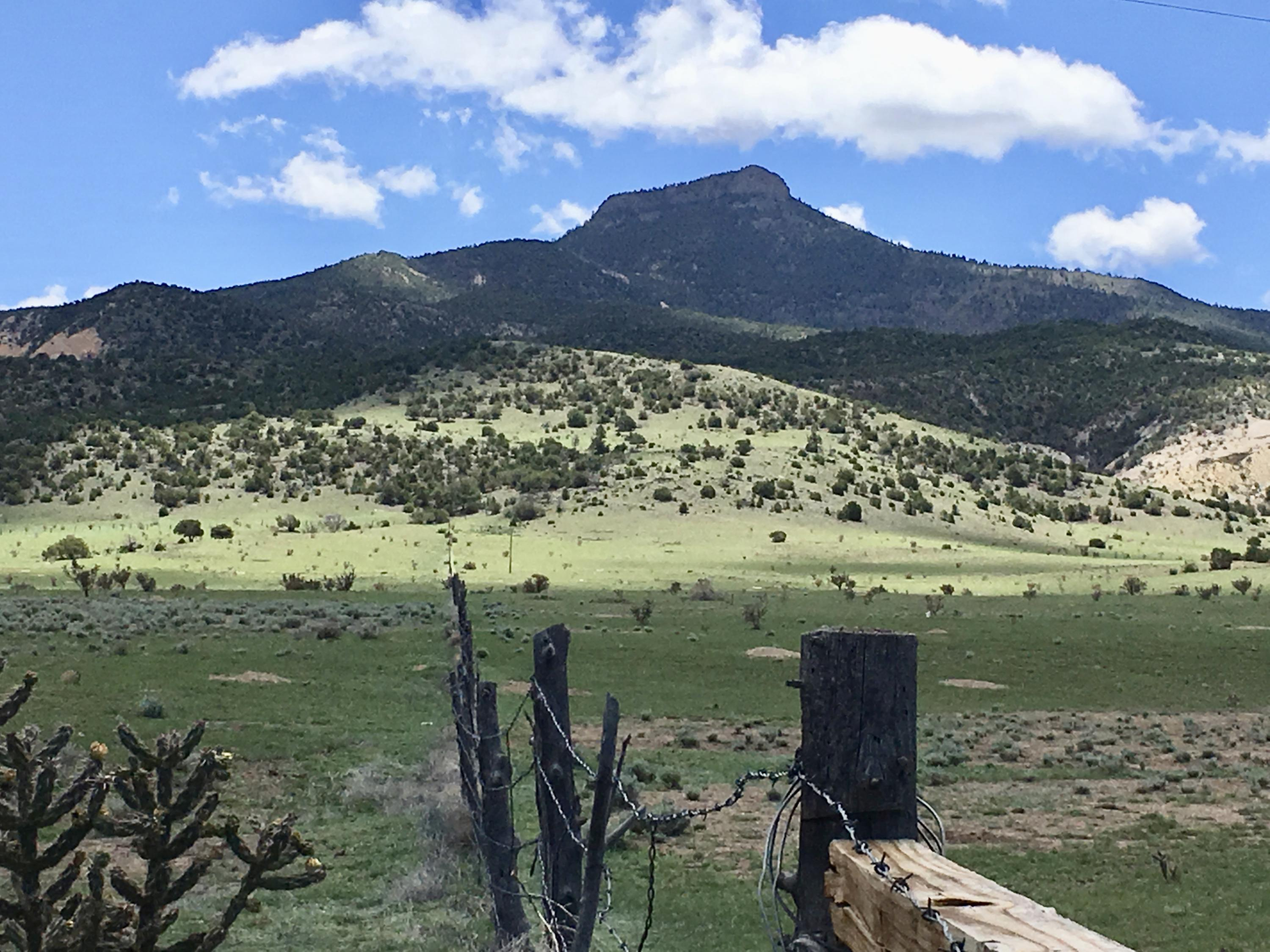 OFF NM 96 455.4 Acres, Abiquiu, NM 87510 - Abiquiu, NM real estate listing