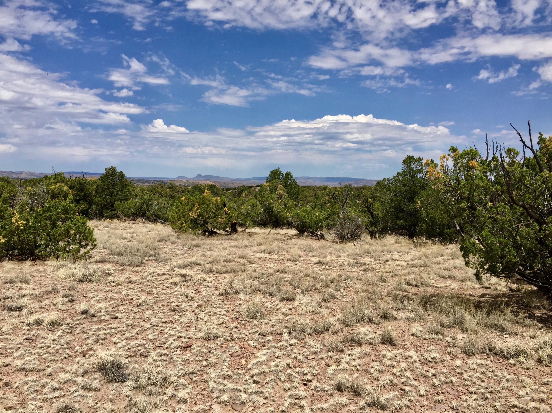 44 Camino del Sueno Property Photo - Magdalena, NM real estate listing