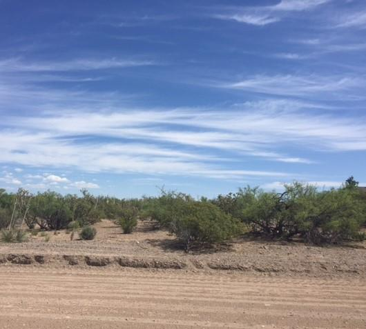 105 BRAZOS Street Property Photo - Elephant Butte, NM real estate listing