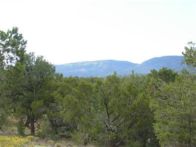73 Canyon Ridge Drive Property Photo - Sandia Park, NM real estate listing
