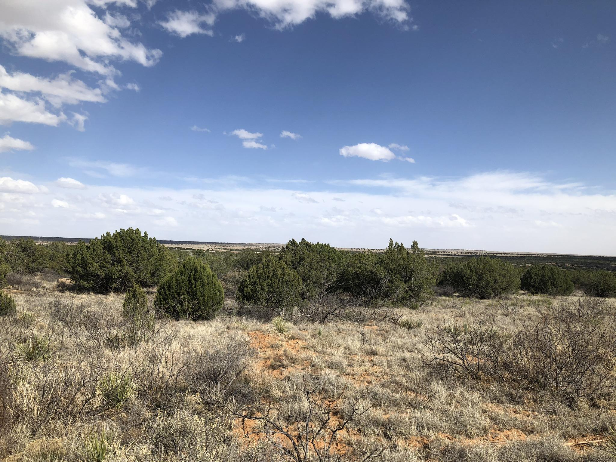 1300 Blue Hole Road Property Photo - Santa Rosa, NM real estate listing