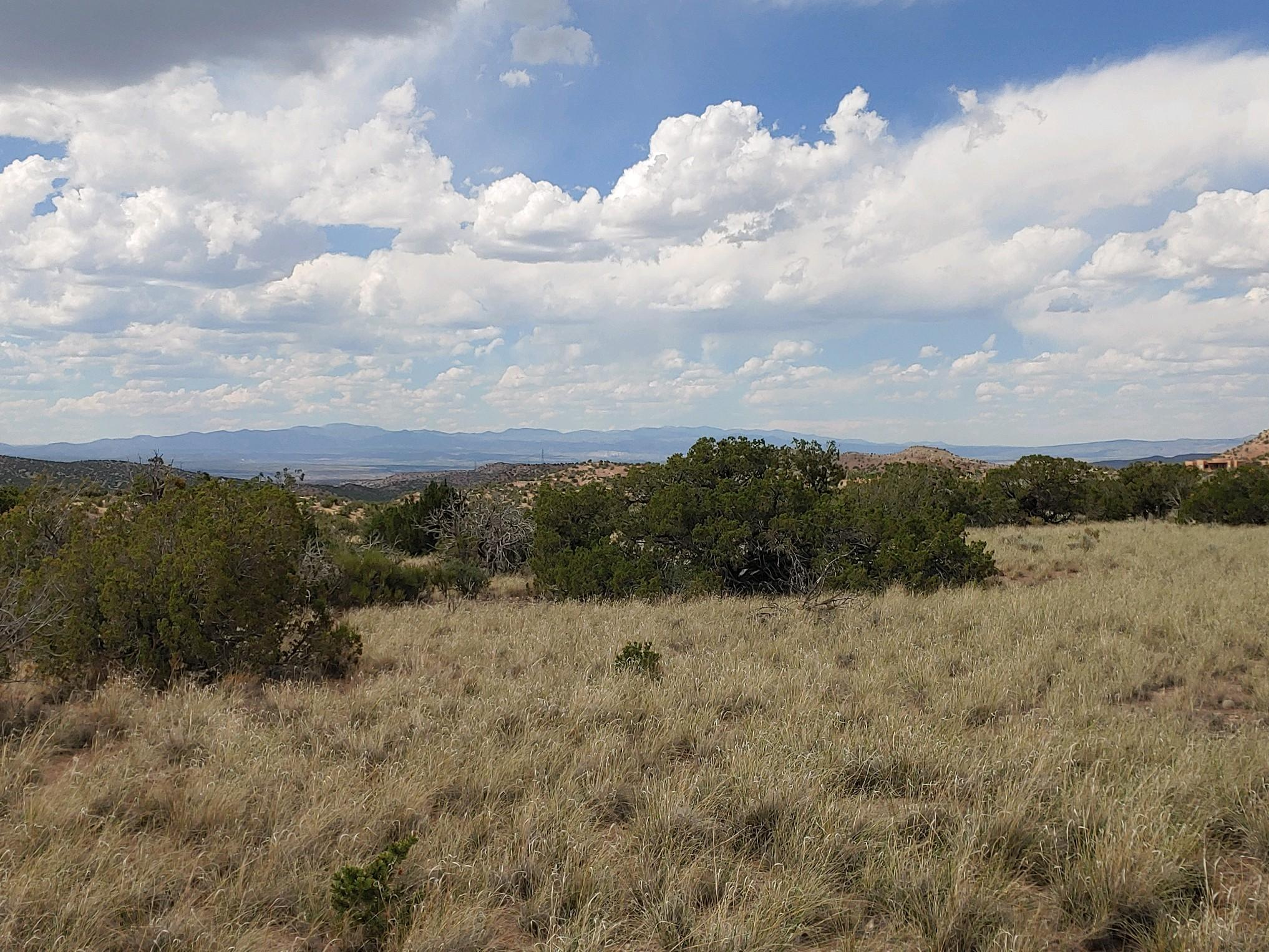 Wild Marigold Property Photo - Placitas, NM real estate listing