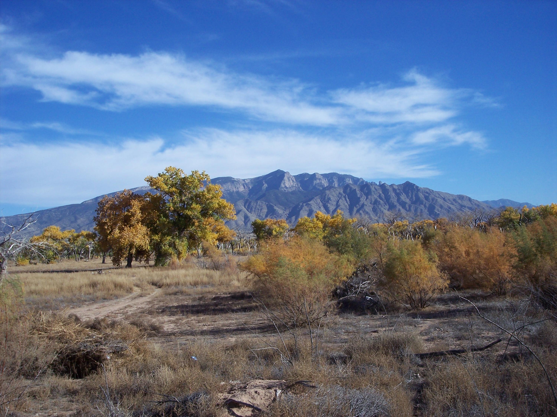 Corazon del Bosque Road Property Photo - Bernalillo, NM real estate listing