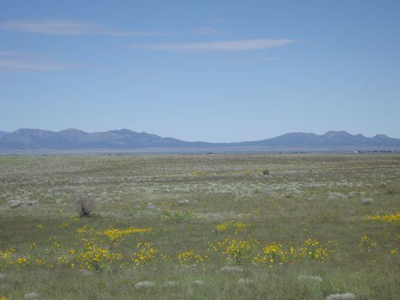 520 B ANAYA Road Property Photo - Stanley, NM real estate listing