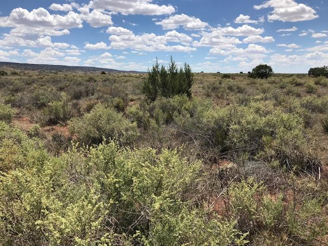 0 Cochiti Road Property Photo - Laguna, NM real estate listing