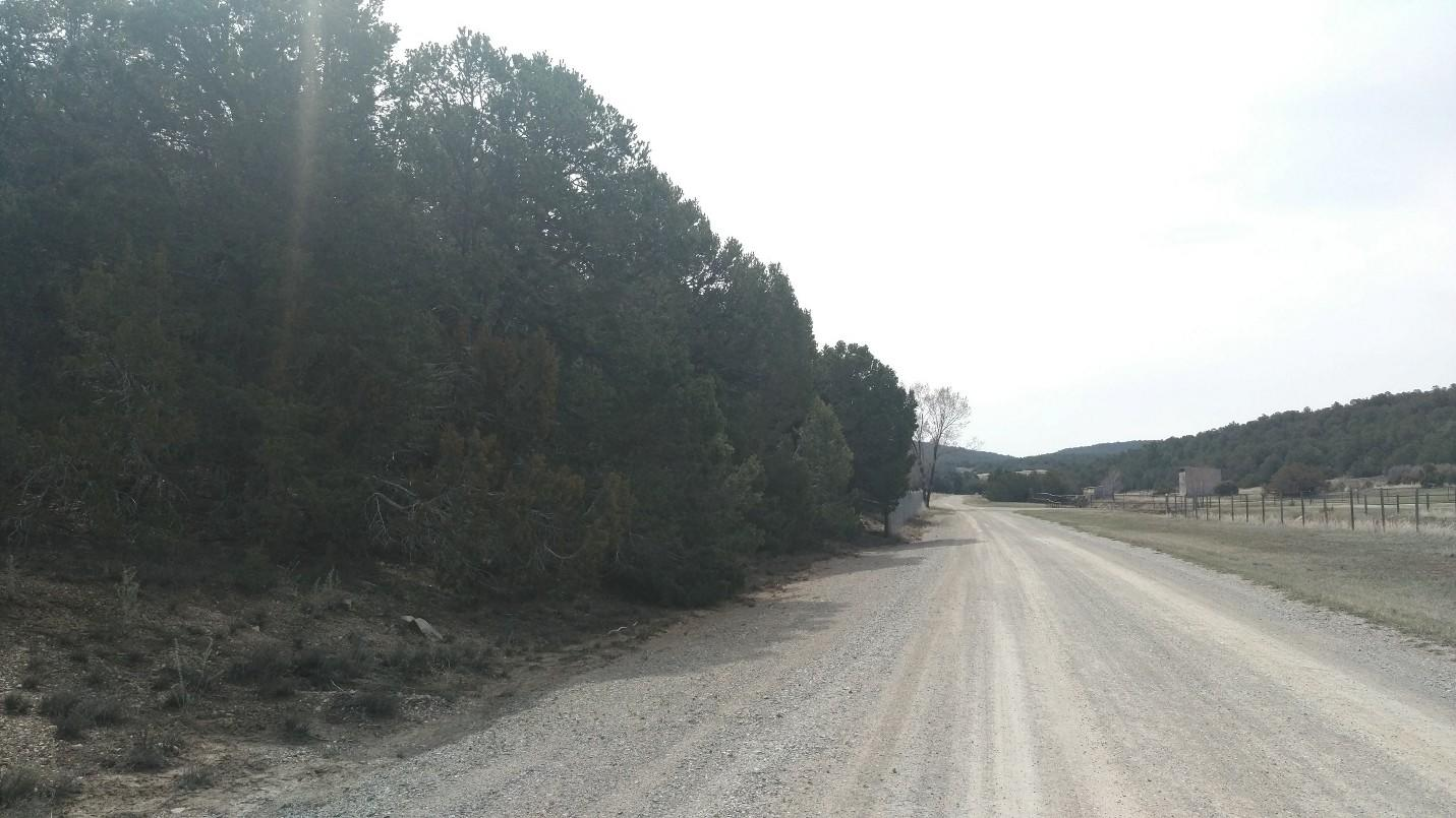 19 Asher Lane Property Photo - Tijeras, NM real estate listing