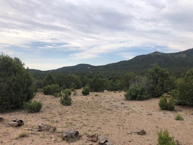 44 B Ranchitos Road Property Photo - Golden, NM real estate listing