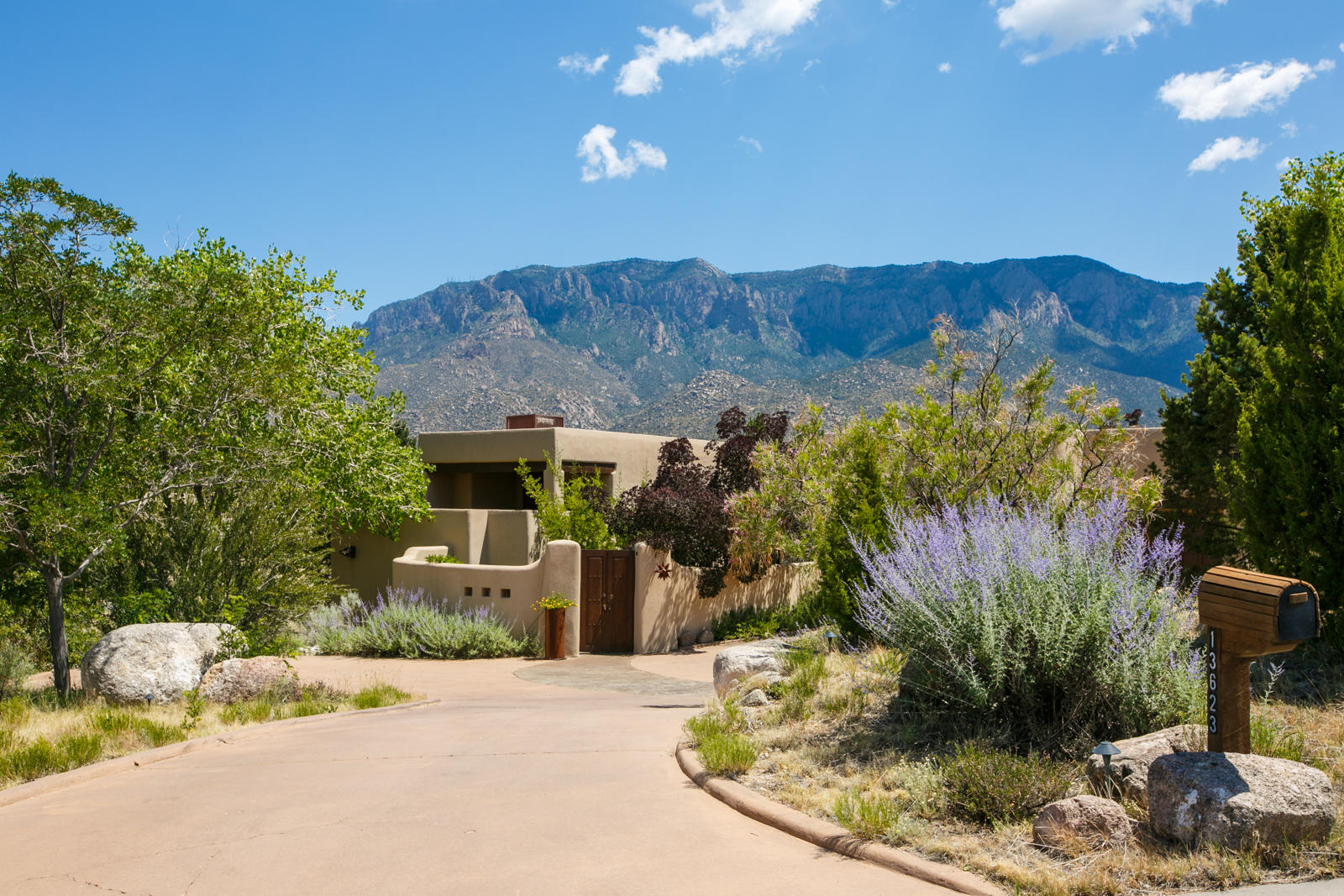 13623 CANADA DEL OSO Place NE Property Photo - Albuquerque, NM real estate listing