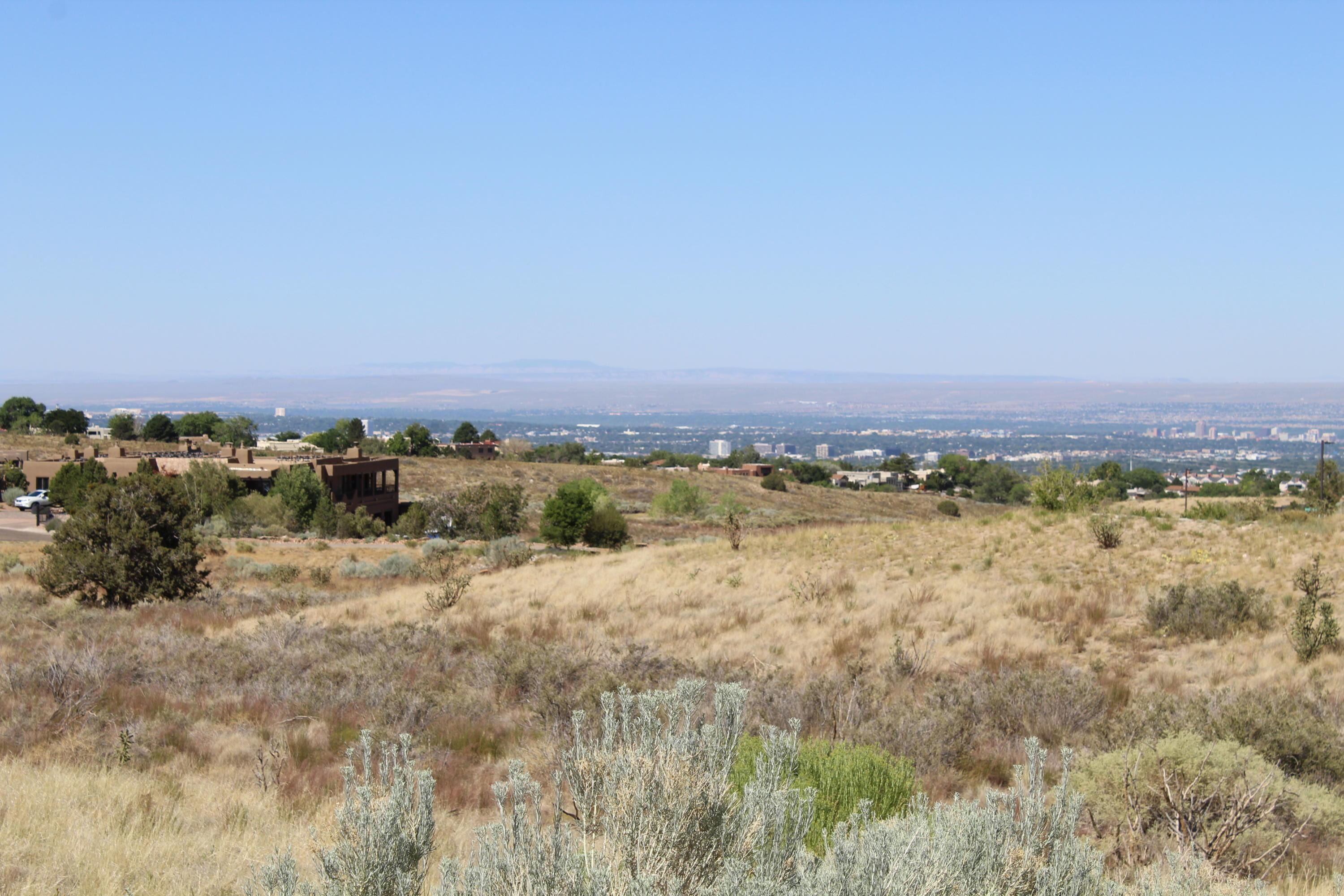 13604 BARRANCA VISTA Court NE Property Photo - Albuquerque, NM real estate listing
