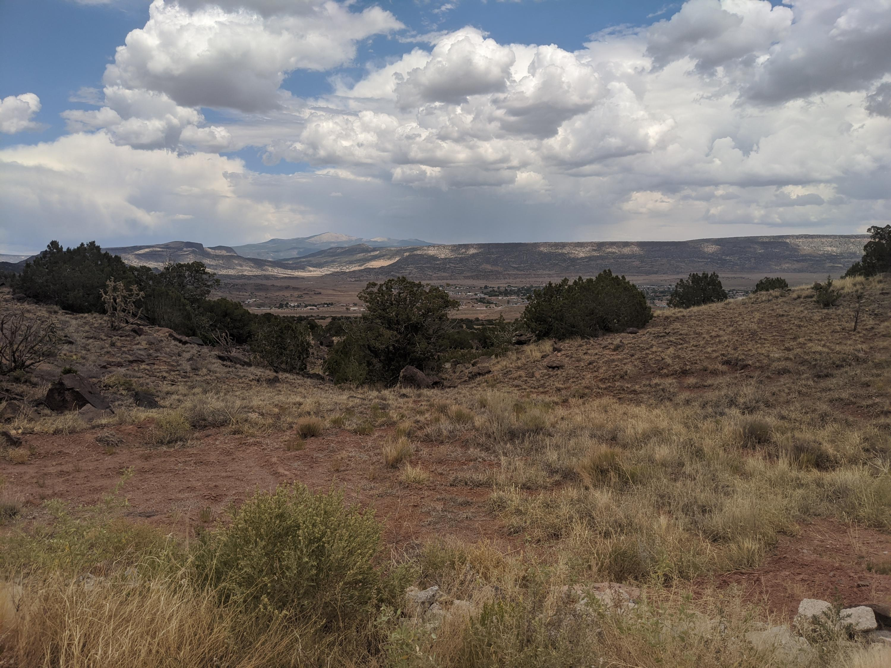 Grants Land 335 Acres Property Photo - Grants, NM real estate listing