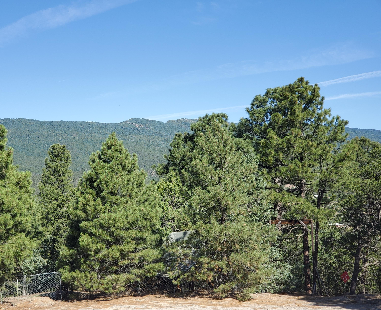 6 Sangre de Cristo Court Property Photo - Cedar Crest, NM real estate listing