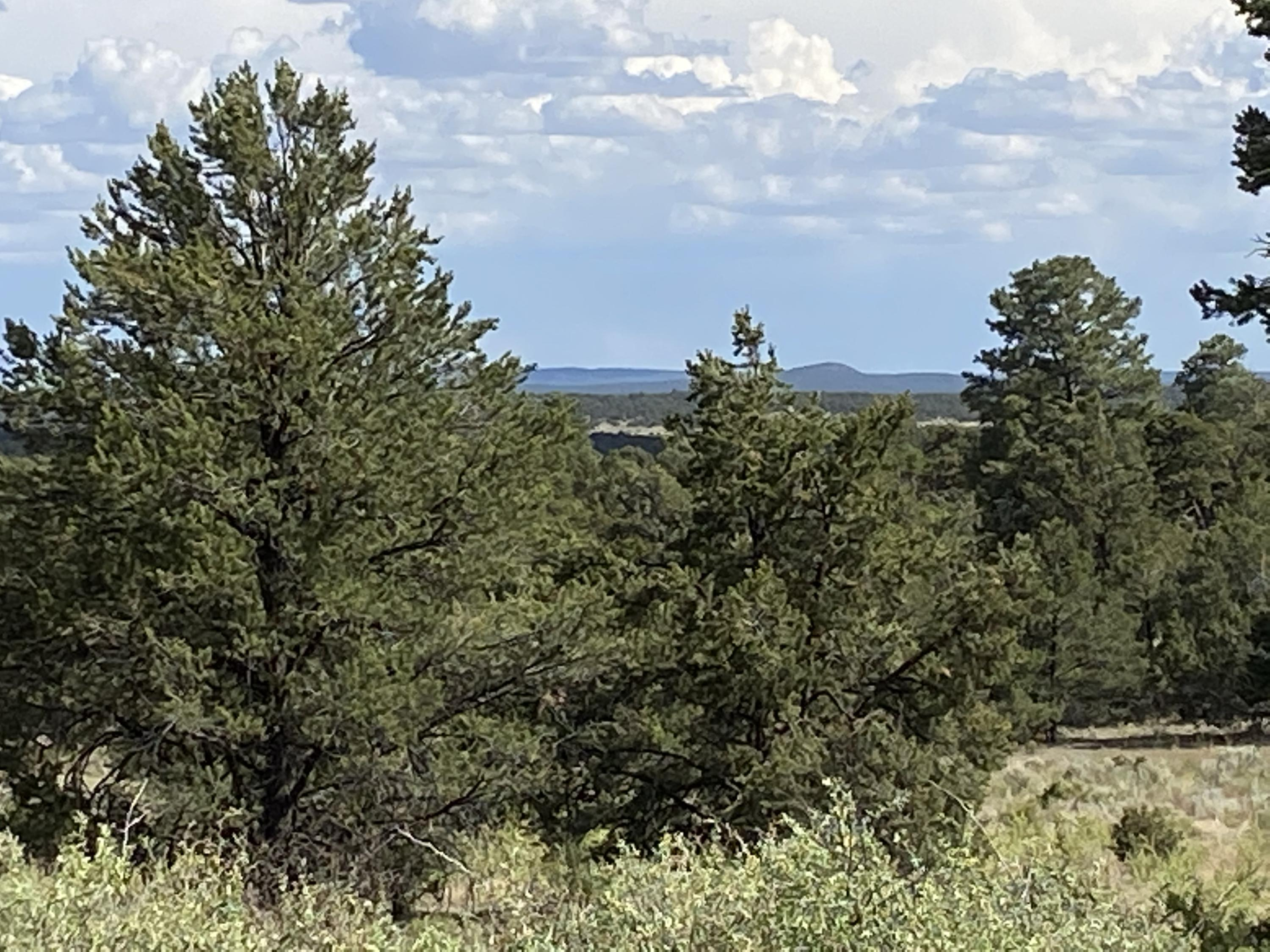 Lots10-11 High Horse Loop Road Property Photo - Ramah, NM real estate listing
