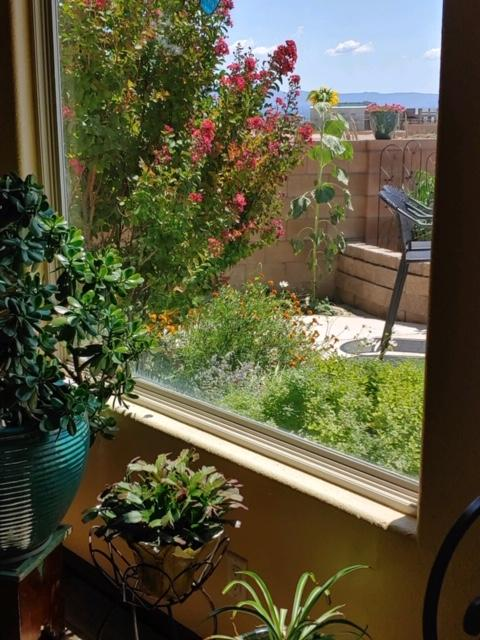 6444 HOPS Court NW Property Photo - Albuquerque, NM real estate listing