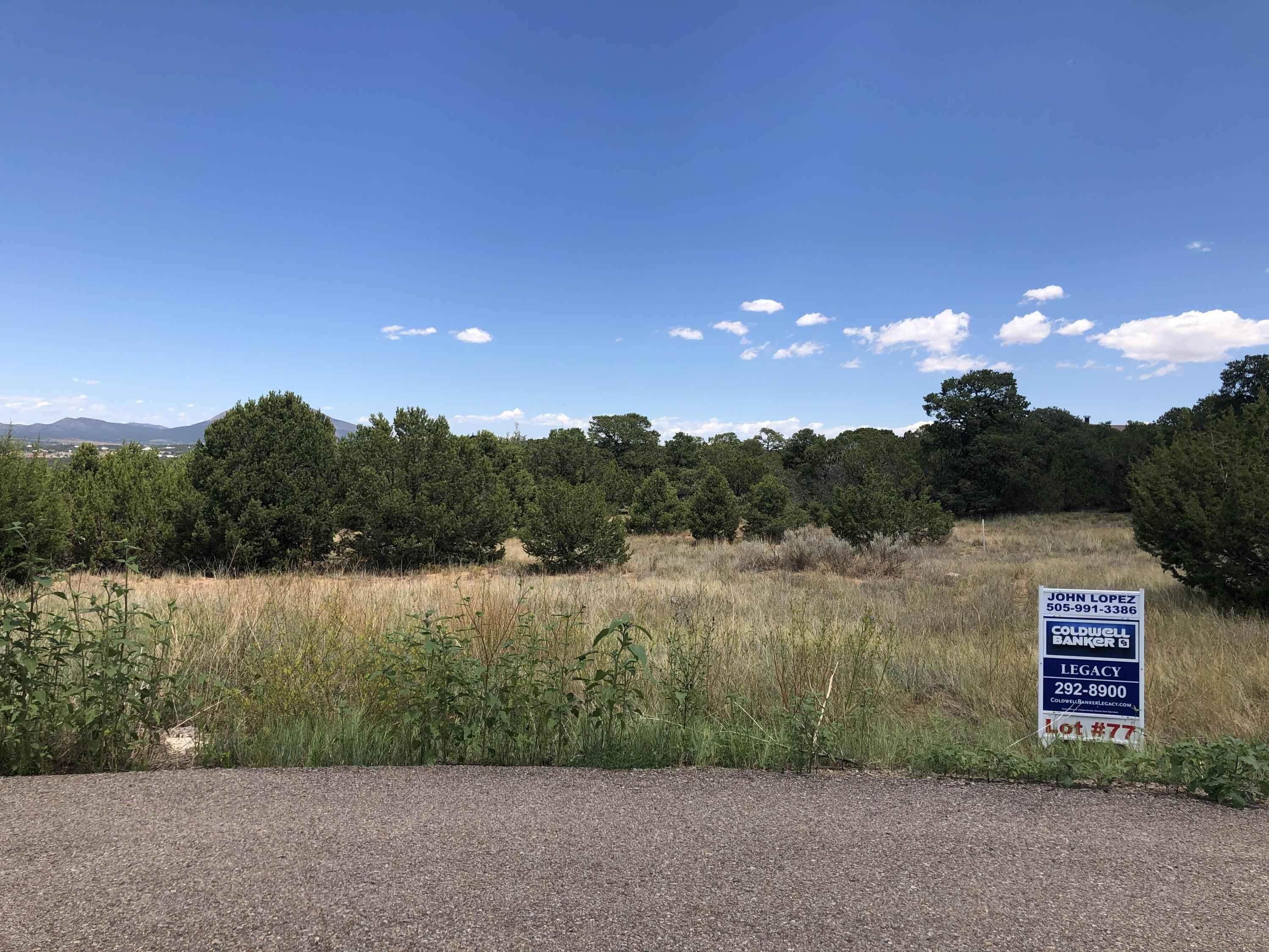 10 Black Bear Court Property Photo - Tijeras, NM real estate listing