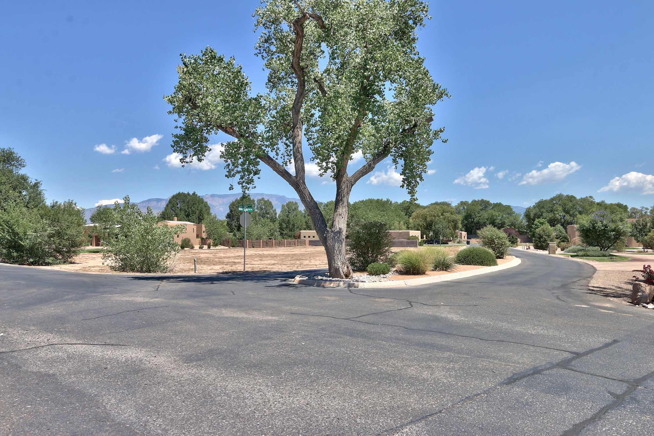 0 BONA TERRA Place NW Property Photo - Albuquerque, NM real estate listing